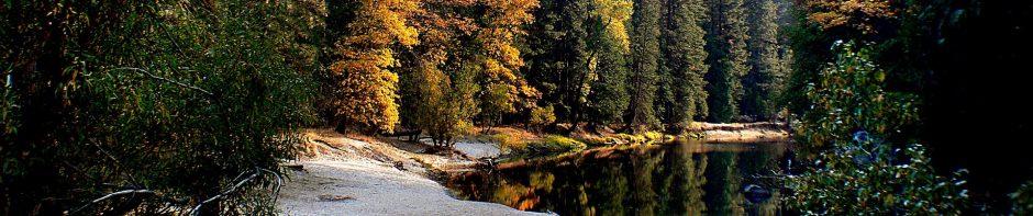 cropped-landscape-1801985_1920.jpg