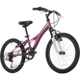 Diamondback Tess 20 Complete Bike – 2014