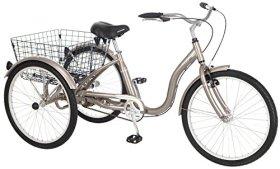 Meridian Adult Trike