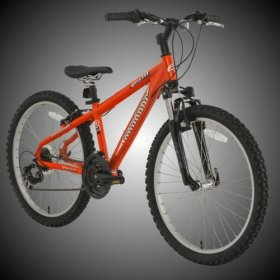 BikeHard Battle Twenty-Four 24″ Burnt Orange