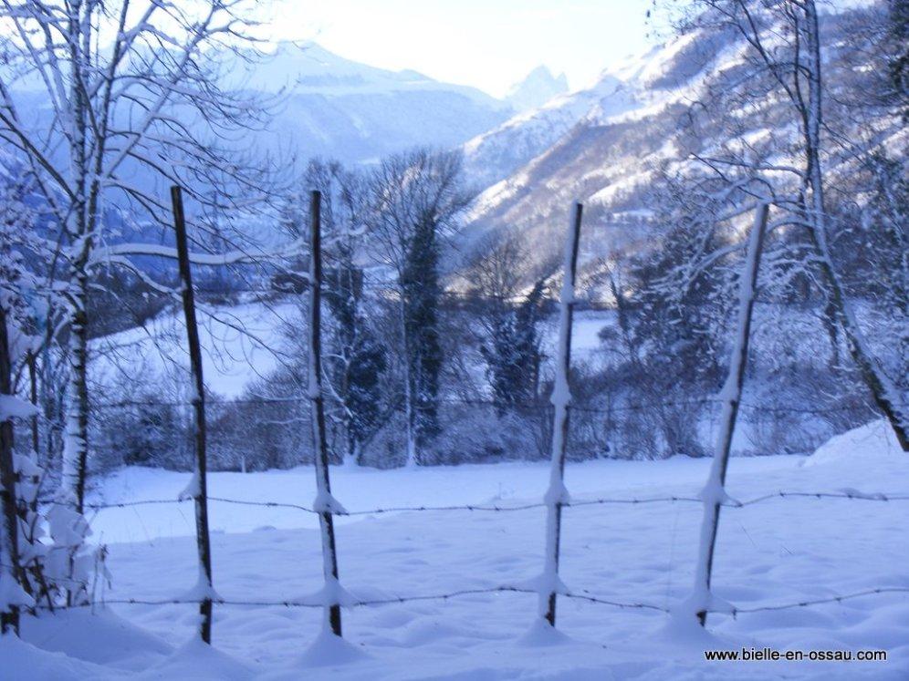 hiver 2010 023