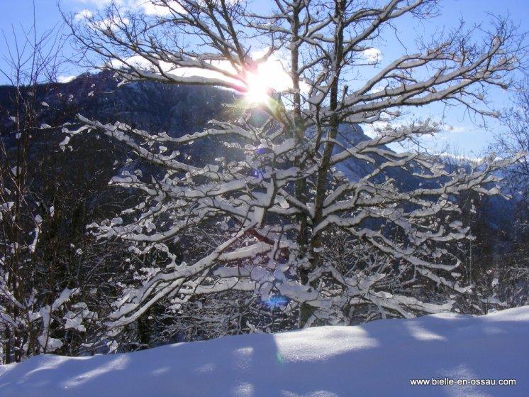 hiver 2010 027