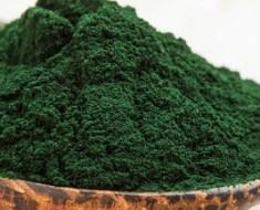 La spiruline, une algue qui aide à perdre du poids