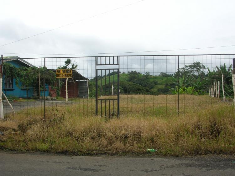 LOTE EN SAN LUIS DE SANTO DOMINO TEV424