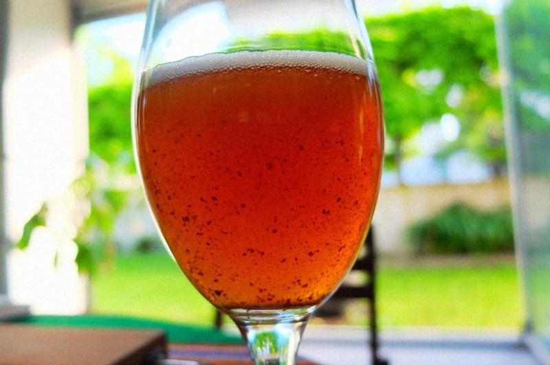 Bierversuche_Tripel_Tasting_003