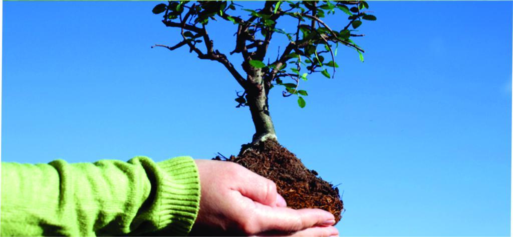 desarrollo-sustentable_1024x473