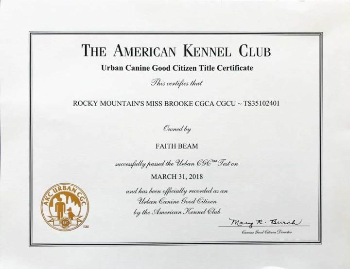 Rocky Mountain's Miss-Brooke Biewer Terrier AKC Urban Community Canine Title Certificate
