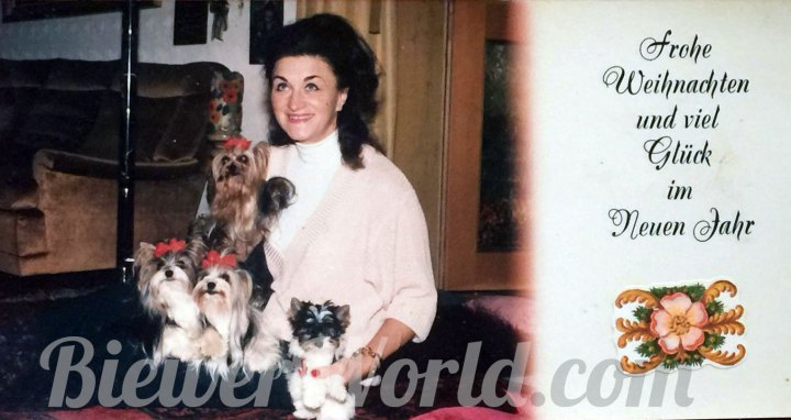 Gertrud Biewer and her Biewer Yorkies on a Christmas Card