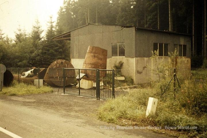 The Biewer Property in Hirschfeld before remodel