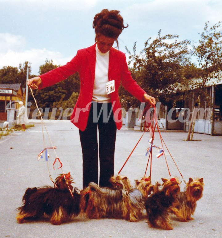 Gertrud Biewer at a dog show with her Friedheck Yorkshire Terriers