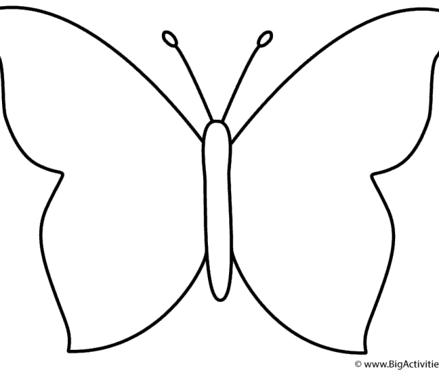 Simple Butterfly Coloring Page Insects