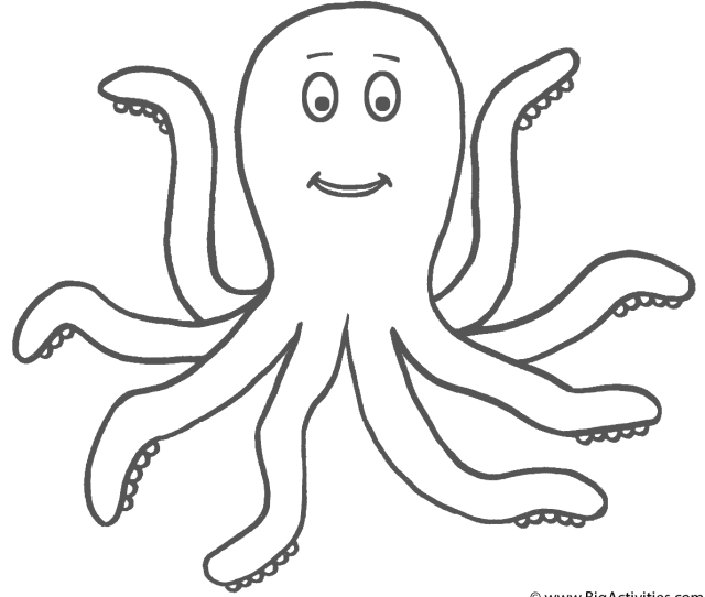 Octopus Coloring Page Sea Marine