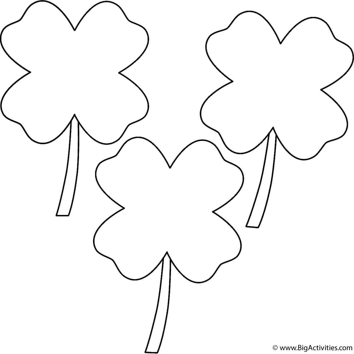 Four Leaf Clovers 3 Clovers