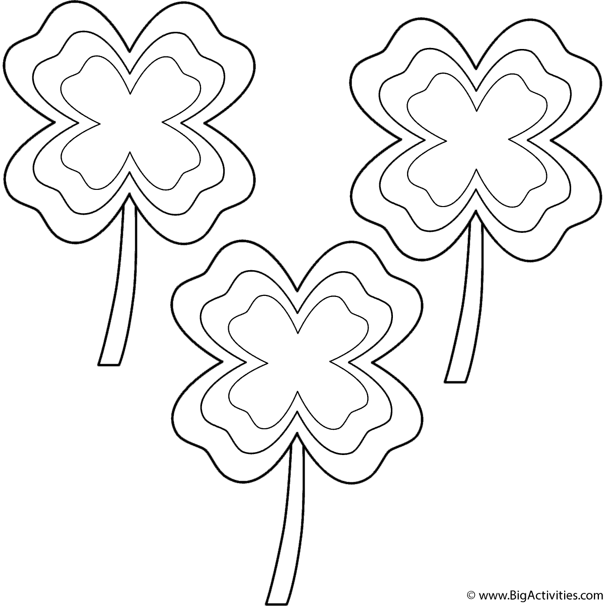 Four Leaf Clovers With Multi Border 3 Clovers