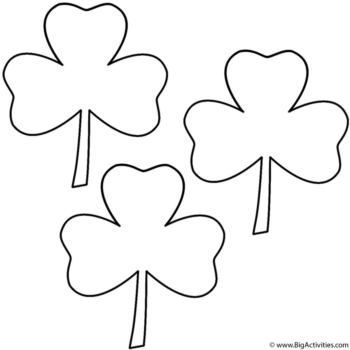 Three Leaf Clovers 3 Clovers