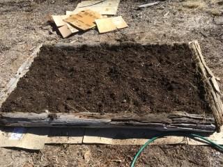 Permaculture - Building a No-Dig garden