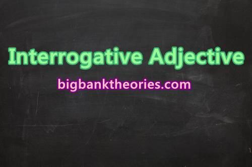 Contoh Interrogative Adjective Dalam Bahasa Inggris