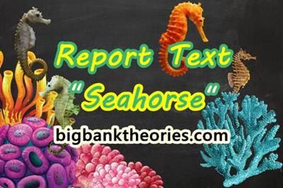 Report Text Bahasa Inggris Tentang Kuda Laut