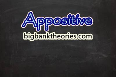 Definition and Examples of Appositive
