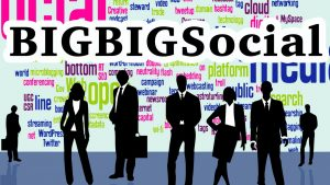 bigbigsocial social media management