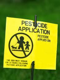 sin pesticidas