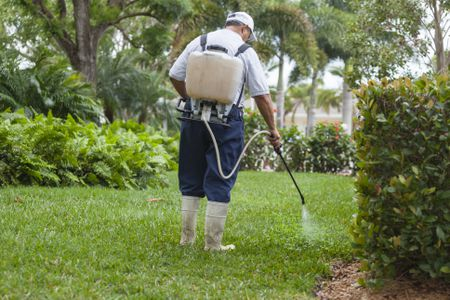 How to Transition Your Lawn Off Chemical Fertilizers and