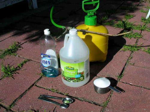herbicida de vinagre