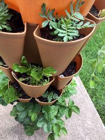 green stalk vertical gardening system