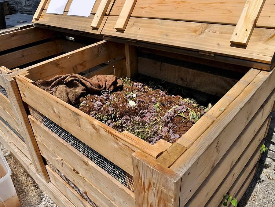 Cómo hacer la transición de su césped a fertilizantes químicos y pesticidas ⋆ Big Blog Of Gardening