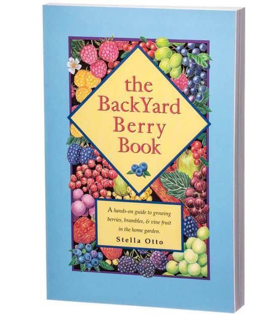 reseña del libro de bayas del patio trasero