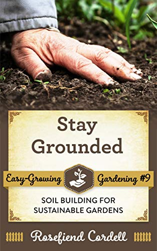 stay grounded book amazon