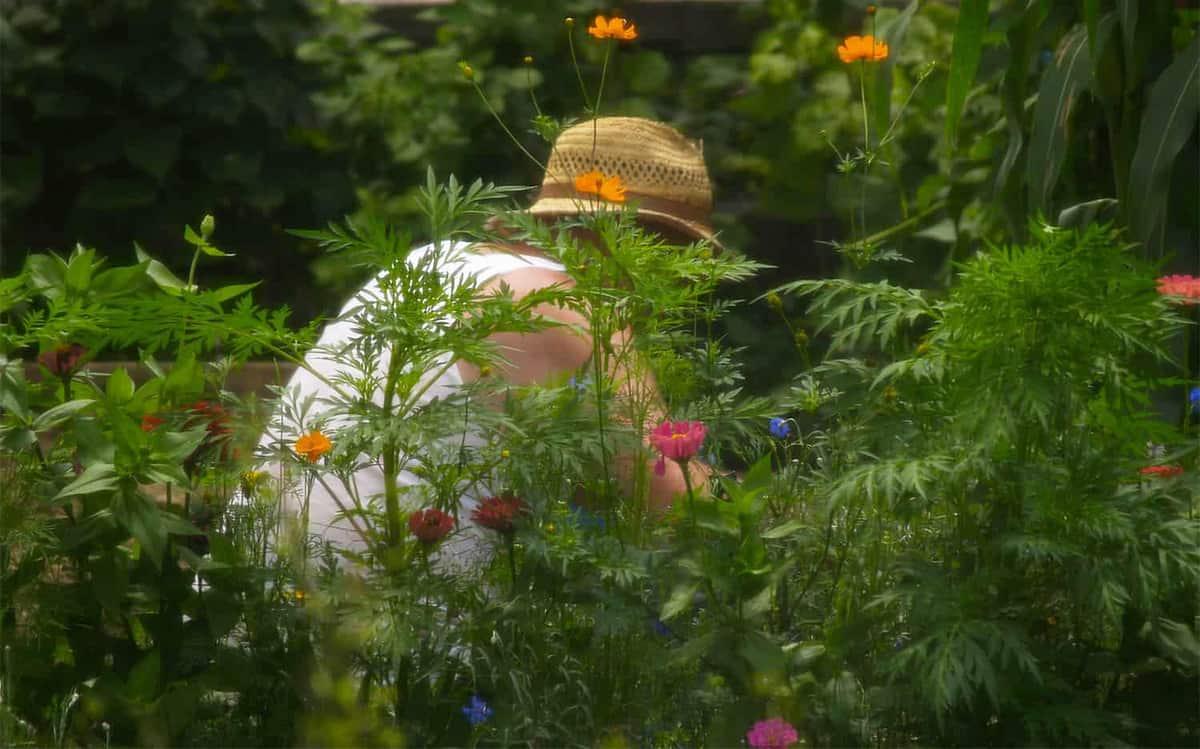 Impacto positivo de la jardinería en la salud física y mental