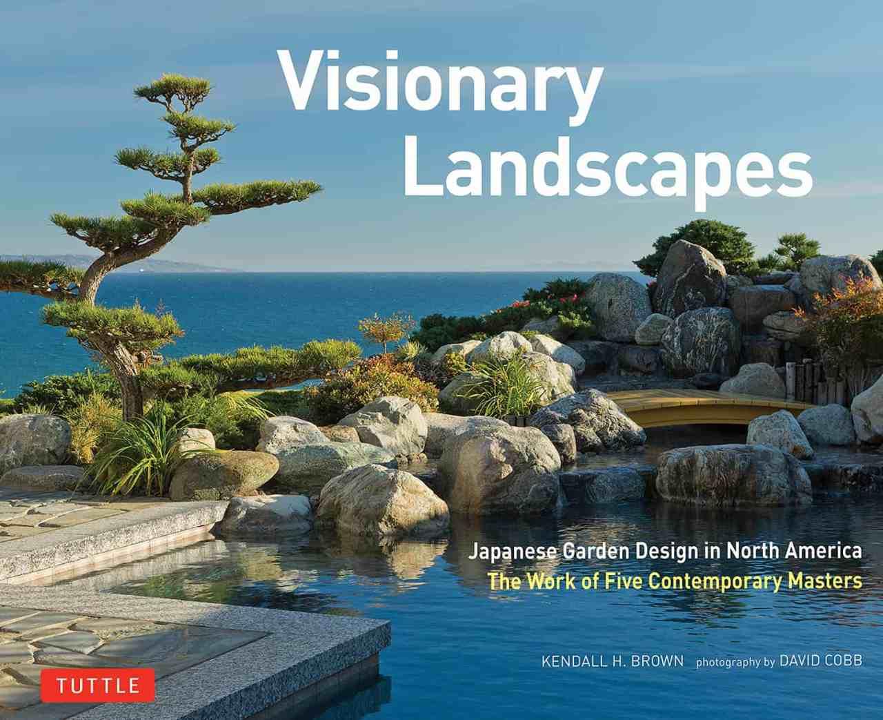 libro de paisajes visionarios