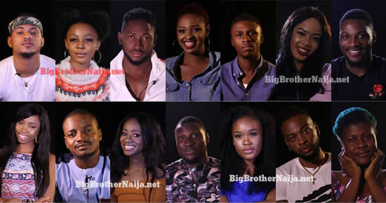 Big Brother Naija 2018 Housemates Strategic Pairs