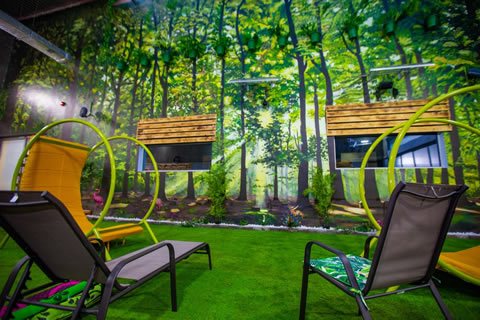 Big Brother Naija 2019 House Garden