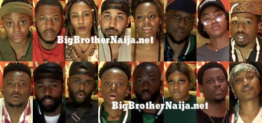 Big Brother Naija 2019 Week 4 Nominated Housemates