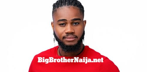 Praise Nelson, Big Brother Naija 2020 Housemate