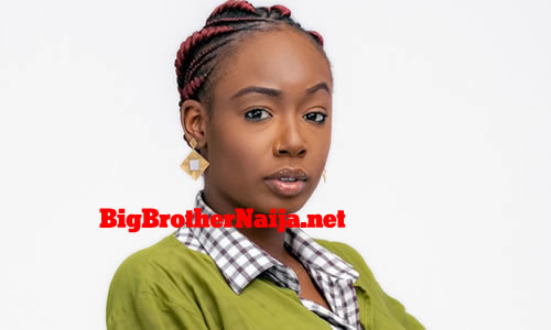 Tolanibaj Tolani Shobajo, Big Brother Naija 2020 Housemate