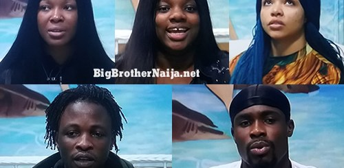 Big Brother Naija 2020 'Season 5' Lockdown Finalists Voting