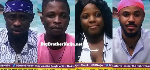 Big Brother Naija 2020 Week 9 Nominated Housemates