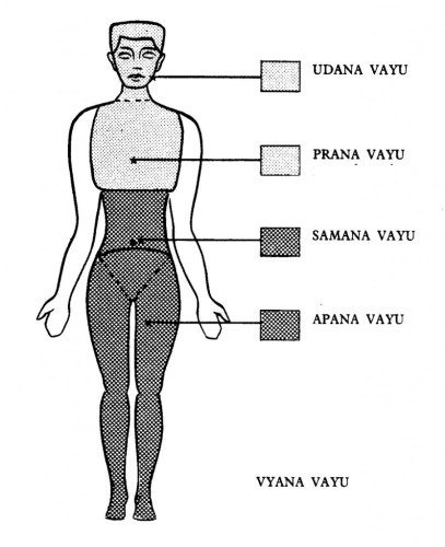What is Pranayama - The Pranic bodies