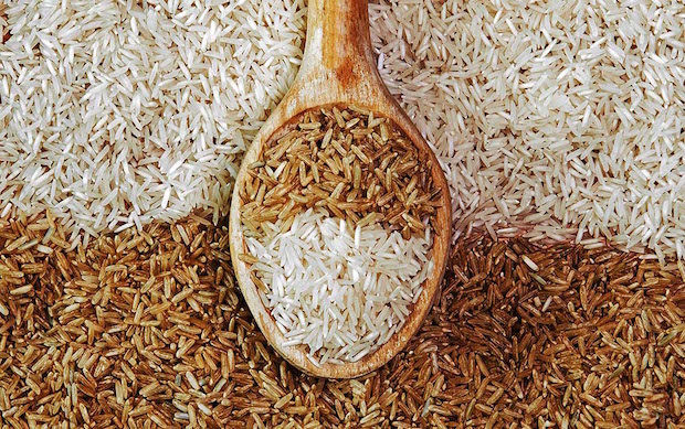 brown rice diet