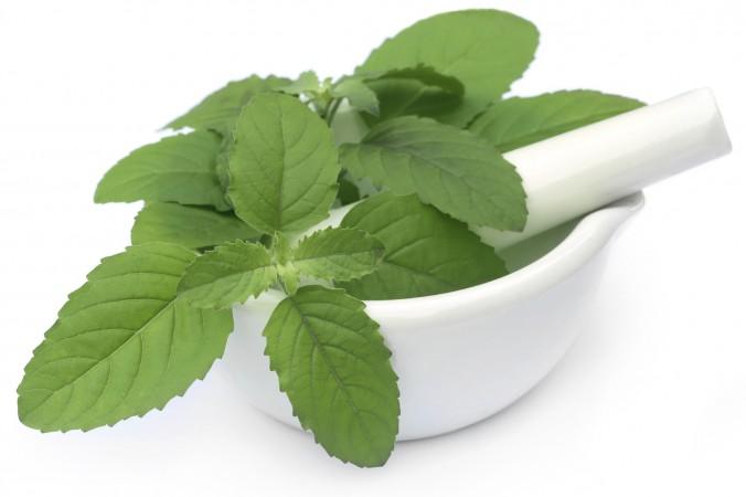 Basil-- for acidity