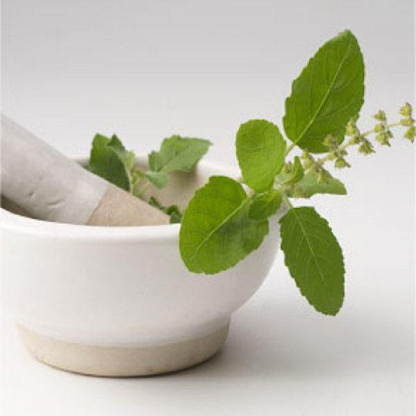 tulsi- ayurvedic home remedy for pimples