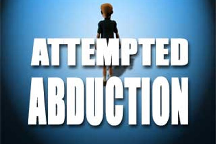 Child Abduction Scare Causes Stir Saturday in Colorado City_-8784340680091481779