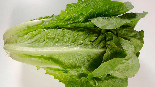 romaine-lettuce_1527868926038_44150412_ver1.0_640_360_1530225170040_47094794_ver1.0_640_360_1544199426256.jpg