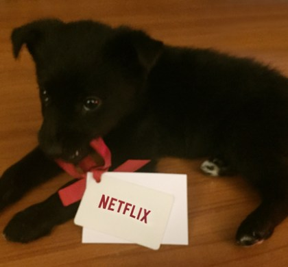Win a 6-month Subscription to @Netflix_CA! #StreamTeam