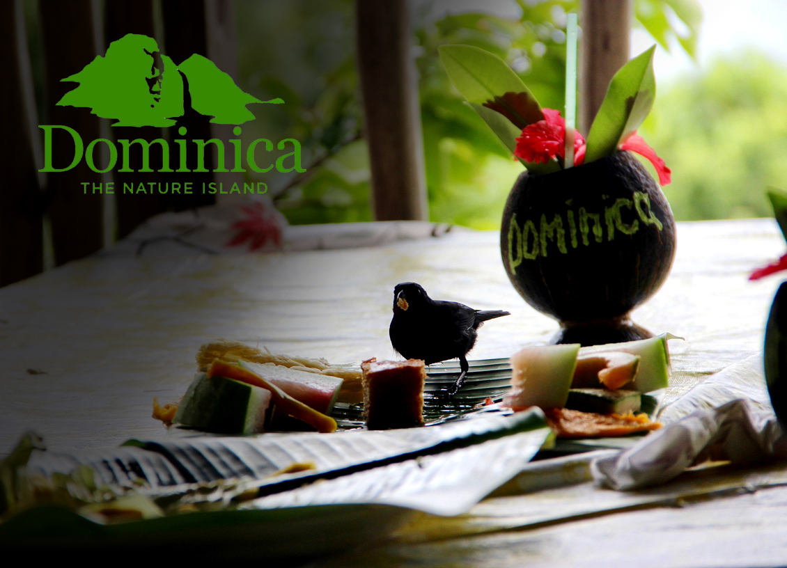 dominica tourism feature