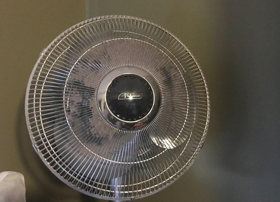 link old fan