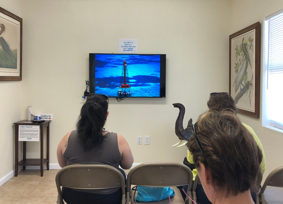 Aquarium Encounters classroom